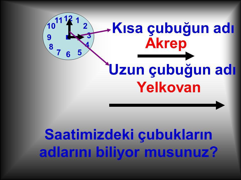 Akrep Yelkovan 1 2 7 3 6 12 4 5 11 10 8 9.Saatimizdeki çubukların adlarını biliyor musunuz.