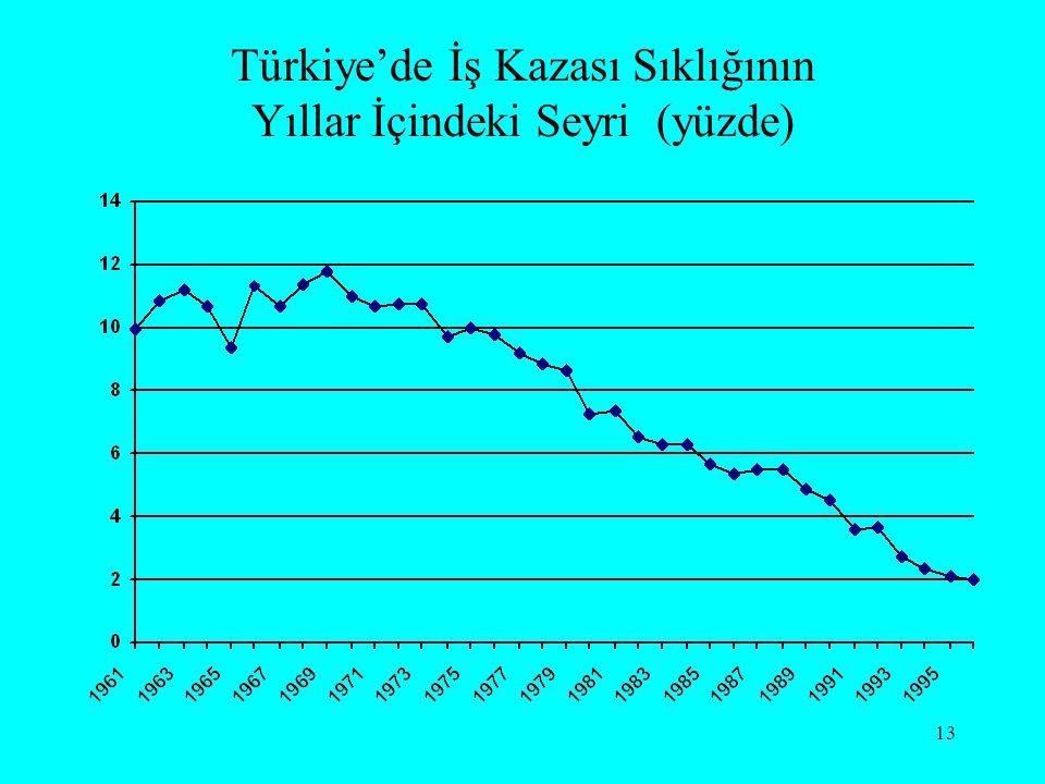 13 Türkiye'de İş Kazası Sıklığının Yıllar İçindeki Seyri (yüzde)