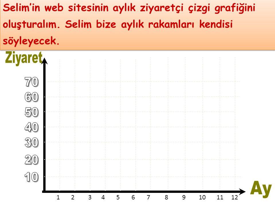 Selim'in web sitesinin aylık ziyaretçi çizgi grafiğini oluşturalım. Selim bize aylık rakamları kendisi söyleyecek. Selim'in web sitesinin aylık ziyare