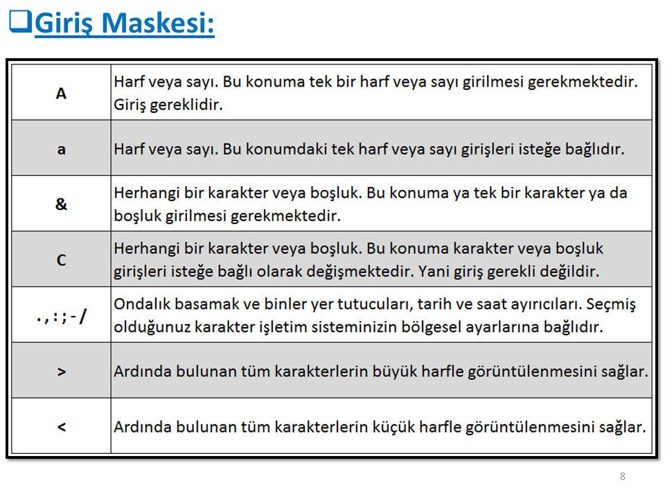 8  Giriş Maskesi: