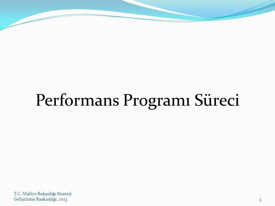 T.C. Maliye Bakanlığı Strateji Geliştirme Başkanlığı, 20133 Performans Programı Süreci