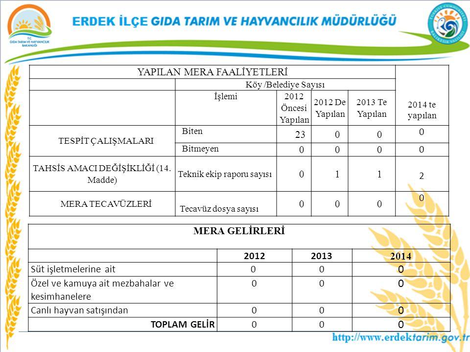 YAPILAN MERA FAALİYETLERİ 2014 te yapılan Köy /Belediye Sayısı İşlemi 2012 Öncesi Yapılan 2012 De Yapılan 2013 Te Yapılan TESPİT ÇALIŞMALARI Biten 23