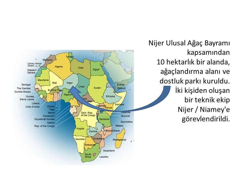 Nijer Ulusal Ağaç Bayramı kapsamından 10 hektarlık bir alanda, ağaçlandırma alanı ve dostluk parkı kuruldu.