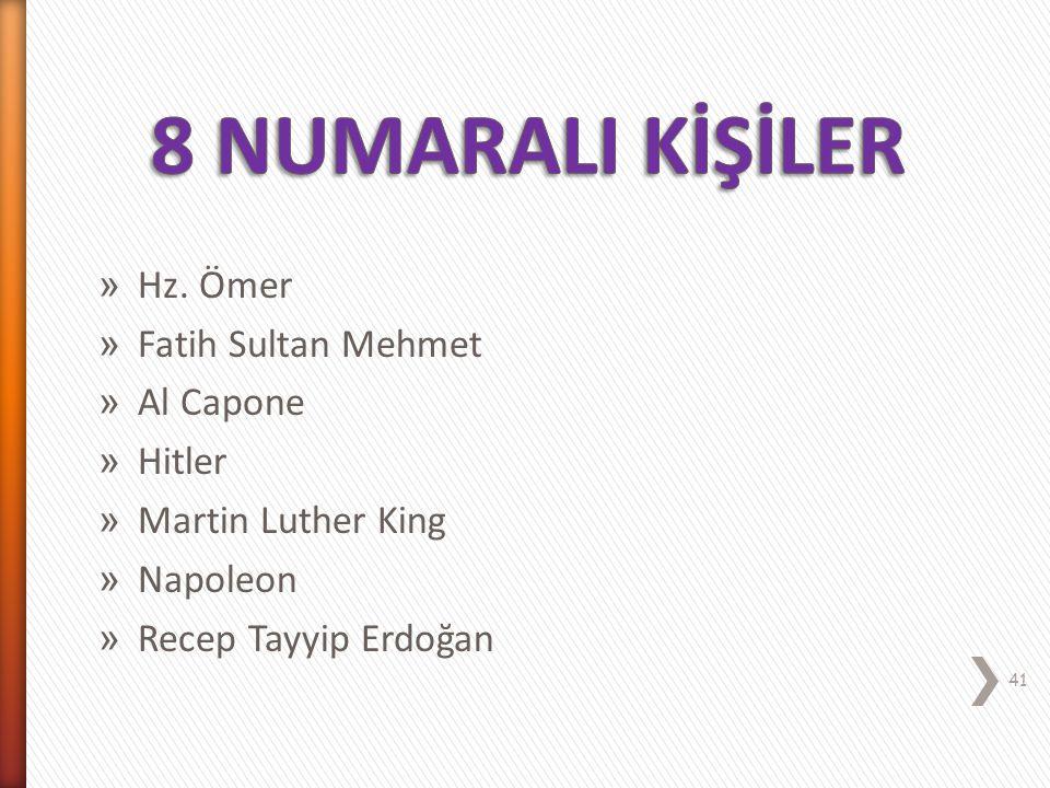 8 NUMARALI KİŞİLİK REİS (Lider) 40