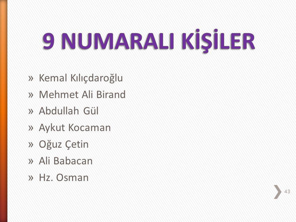 9 NUMARALI KİŞİLİK ARABULUCU (Barışçı) 42