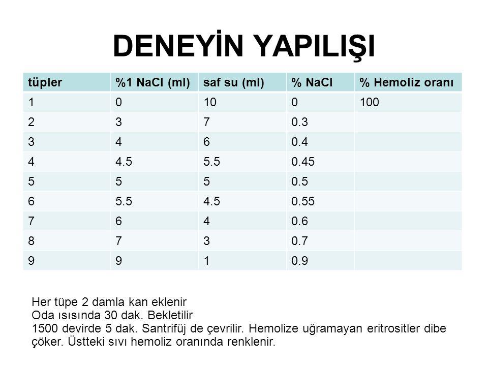 DENEYİN YAPILIŞI tüpler %1 NaCl (ml) saf su (ml)% NaCl% Hemoliz oranı 10100100 2370.3 3460.4 44.55.50.45 5550.5 65.54.50.55 7640.6 8730.7 9910.9 Her tüpe 2 damla kan eklenir Oda ısısında 30 dak.