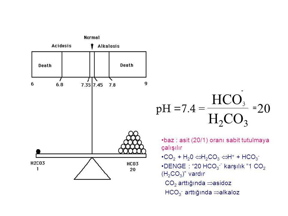pH =7.4 = HCO H 2 CO 3 20 = 3 - baz : asit (20/1) oranı sabit tutulmaya çalışılır CO 2 + H 2 0  H 2 CO 3  H + + HCO 3 - DENGE : 20 HCO 3 - karşılık 1 CO 2 (H 2 CO 3 ) vardır CO 2 arttığında  asidoz HCO 3 - arttığında  alkaloz