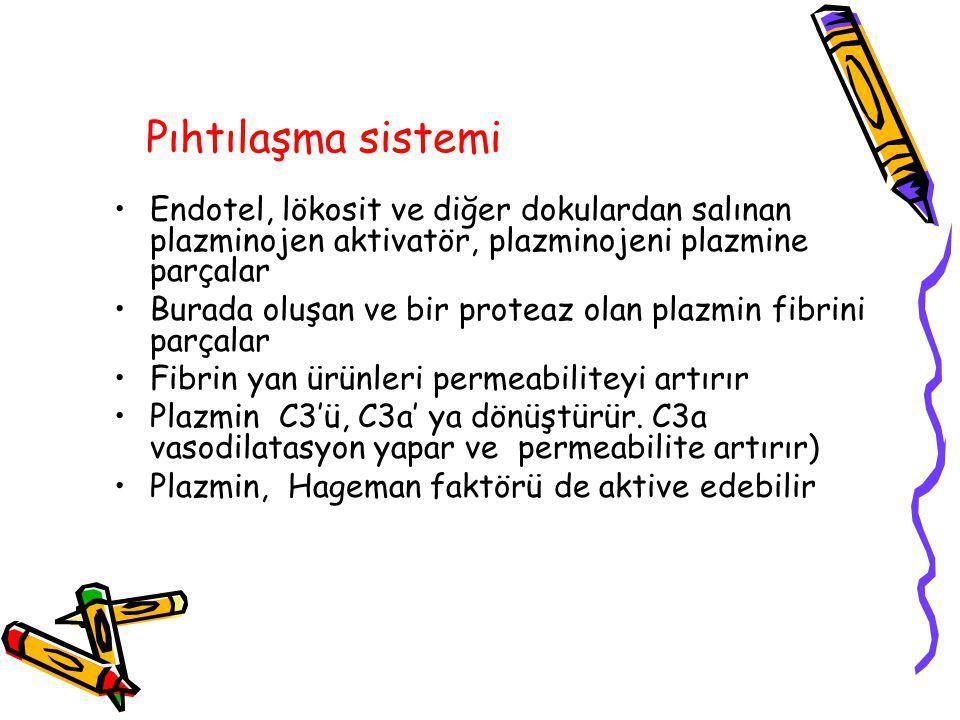 Pıhtılaşma sistemi Endotel, lökosit ve diğer dokulardan salınan plazminojen aktivatör, plazminojeni plazmine parçalar Burada oluşan ve bir proteaz ola