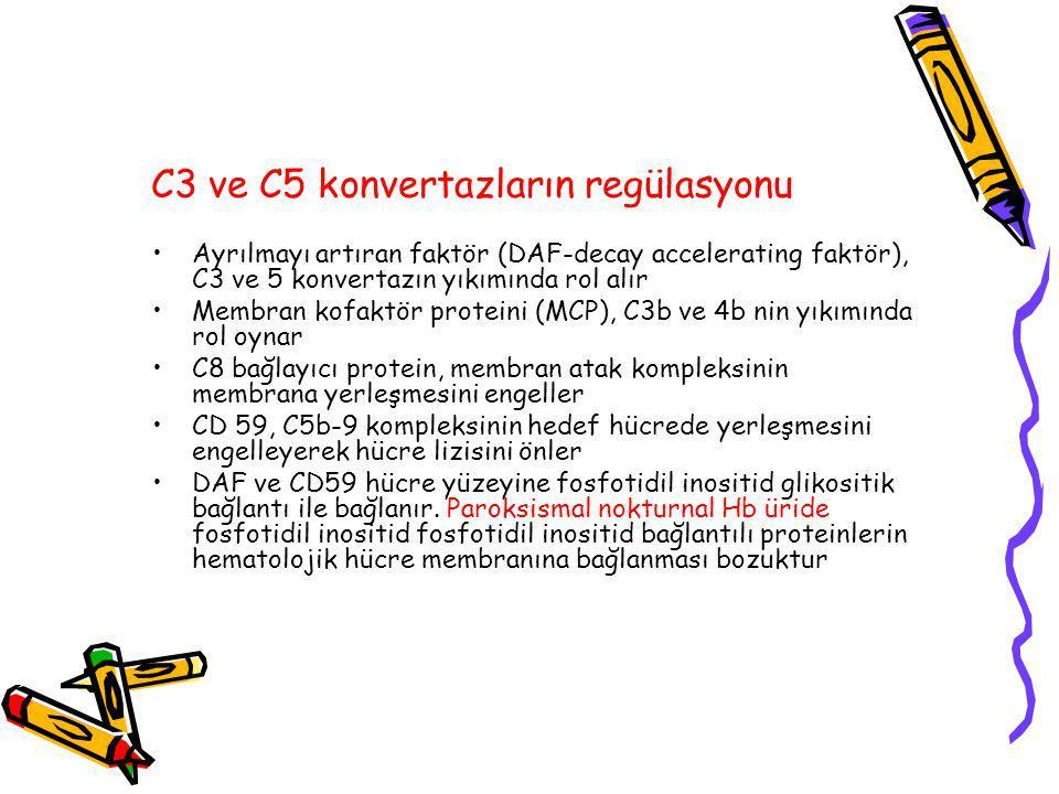 C3 ve C5 konvertazların regülasyonu Ayrılmayı artıran faktör (DAF-decay accelerating faktör), C3 ve 5 konvertazın yıkımında rol alır Membran kofaktör proteini (MCP), C3b ve 4b nin yıkımında rol oynar C8 bağlayıcı protein, membran atak kompleksinin membrana yerleşmesini engeller CD 59, C5b-9 kompleksinin hedef hücrede yerleşmesini engelleyerek hücre lizisini önler DAF ve CD59 hücre yüzeyine fosfotidil inositid glikositik bağlantı ile bağlanır.