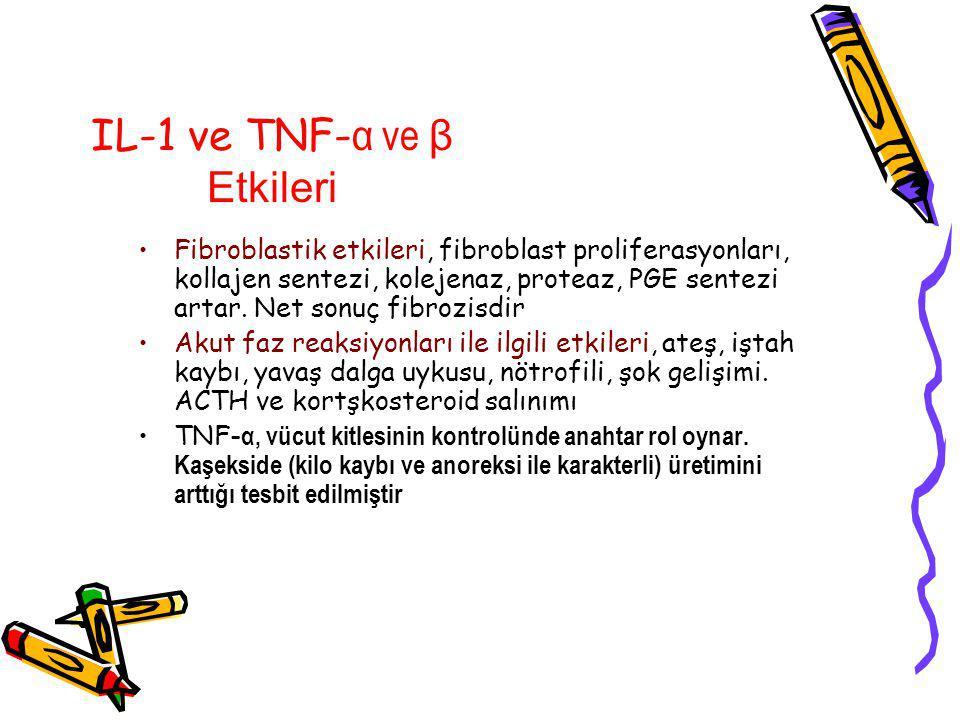 IL-1 ve TNF- α ve β Etkileri Fibroblastik etkileri, fibroblast proliferasyonları, kollajen sentezi, kolejenaz, proteaz, PGE sentezi artar.