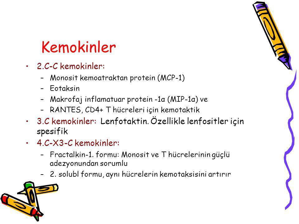 Kemokinler 2.C-C kemokinler: –Monosit kemoatraktan protein (MCP-1) –Eotaksin –Makrofaj inflamatuar protein -1α (MIP-1α) ve –RANTES, CD4+ T hücreleri için kemotaktik 3.C kemokinler: Lenfotaktin.