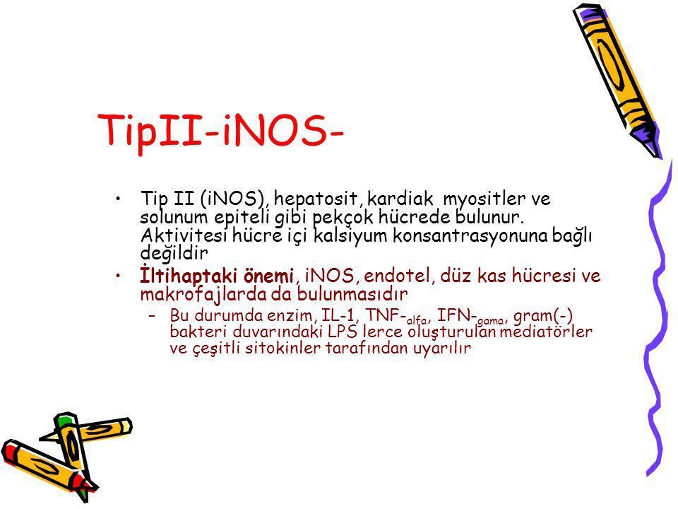 TipII-iNOS- Tip II (iNOS), hepatosit, kardiak myositler ve solunum epiteli gibi pekçok hücrede bulunur. Aktivitesi hücre içi kalsiyum konsantrasyonuna