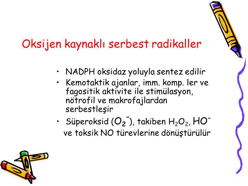 Oksijen kaynaklı serbest radikaller NADPH oksidaz yoluyla sentez edilir Kemotaktik ajanlar, imm. komp. ler ve fagositik aktivite ile stimülasyon, nötr