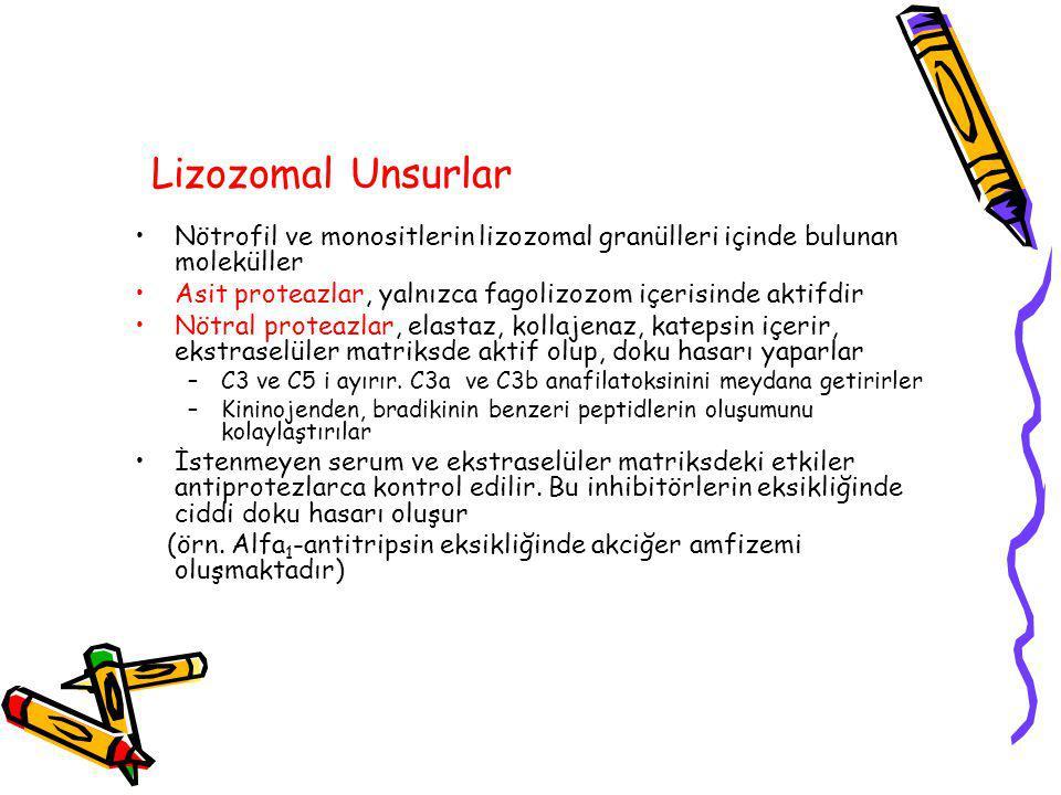 Lizozomal Unsurlar Nötrofil ve monositlerin lizozomal granülleri içinde bulunan moleküller Asit proteazlar, yalnızca fagolizozom içerisinde aktifdir Nötral proteazlar, elastaz, kollajenaz, katepsin içerir, ekstraselüler matriksde aktif olup, doku hasarı yaparlar –C3 ve C5 i ayırır.