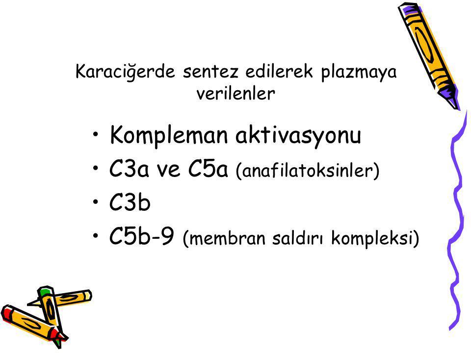 Karaciğerde sentez edilerek plazmaya verilenler Kompleman aktivasyonu C3a ve C5a (anafilatoksinler) C3b C5b-9 (membran saldırı kompleksi)