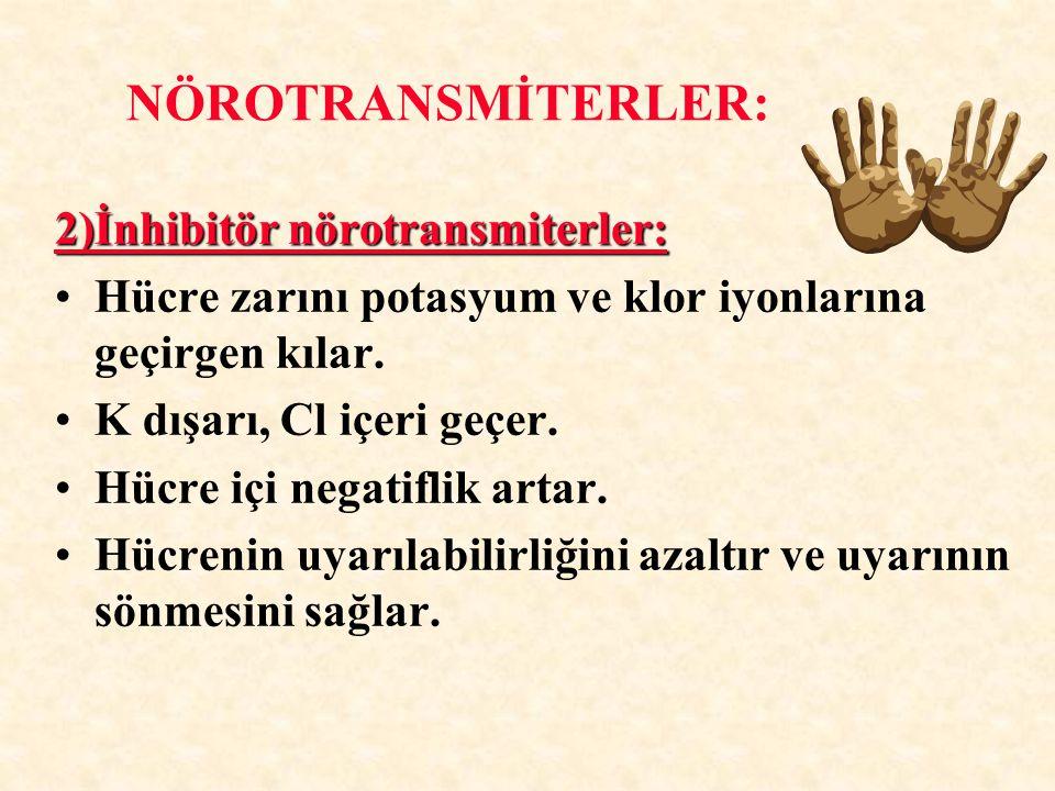 2)İnhibitör nörotransmiterler: Hücre zarını potasyum ve klor iyonlarına geçirgen kılar. K dışarı, Cl içeri geçer. Hücre içi negatiflik artar. Hücrenin