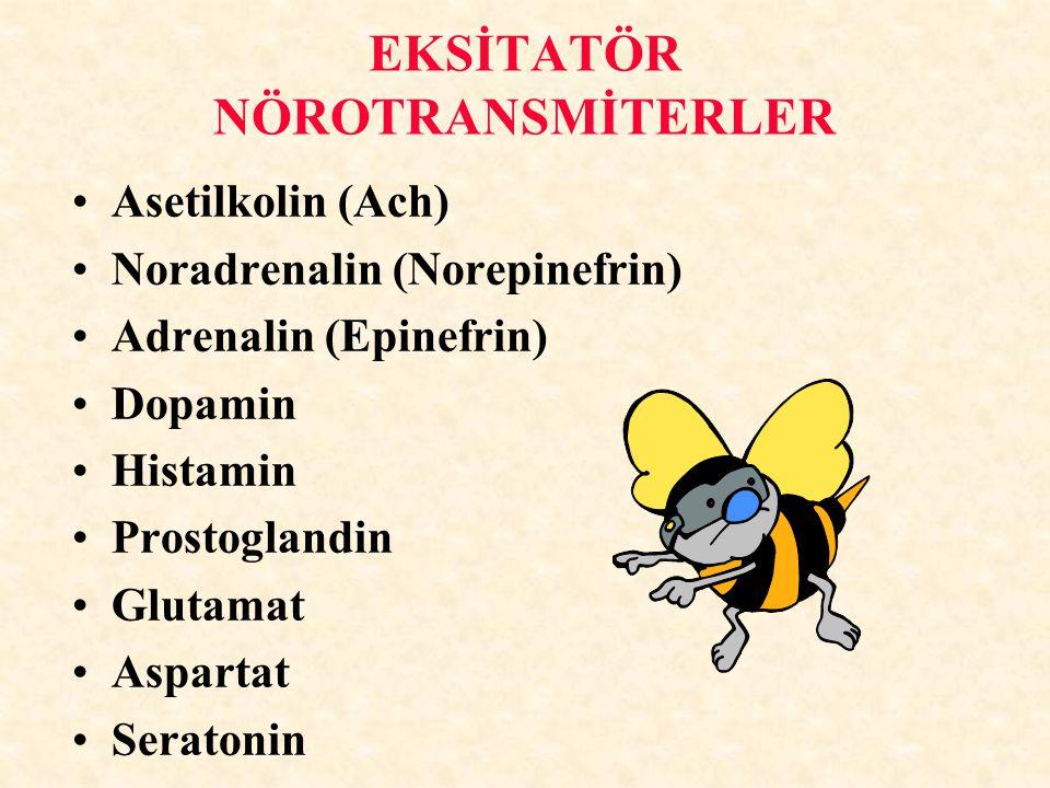 EKSİTATÖR NÖROTRANSMİTERLER Asetilkolin (Ach) Noradrenalin (Norepinefrin) Adrenalin (Epinefrin) Dopamin Histamin Prostoglandin Glutamat Aspartat Seratonin