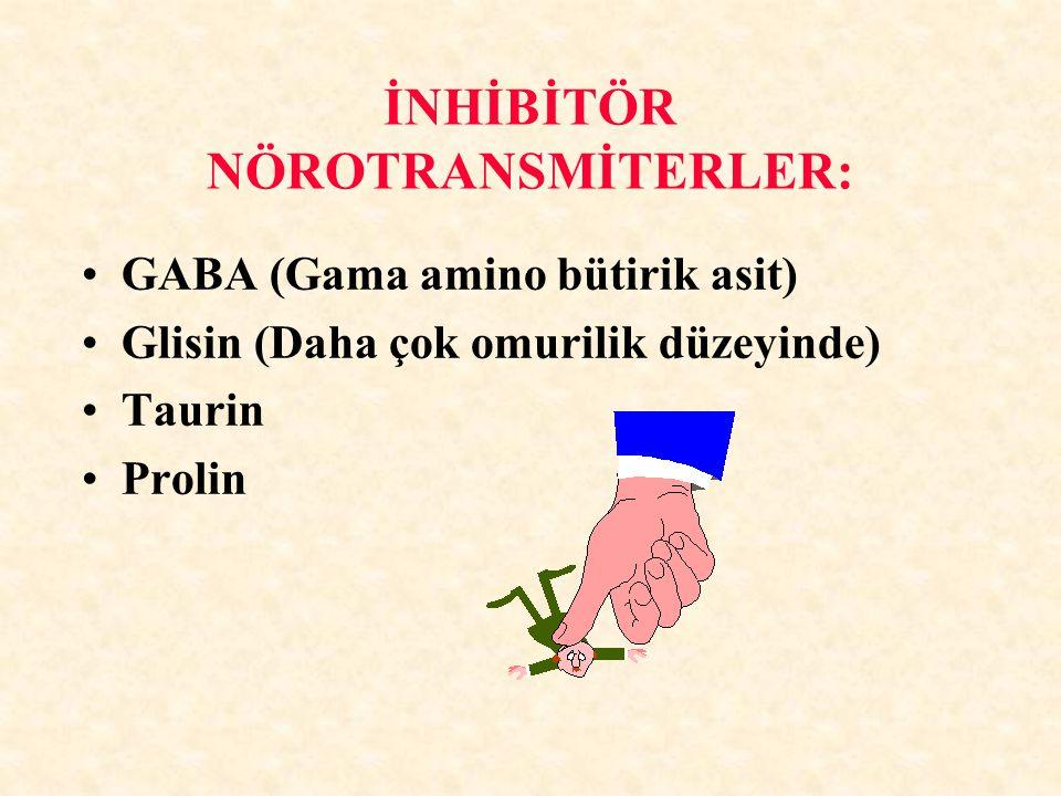 İNHİBİTÖR NÖROTRANSMİTERLER: GABA (Gama amino bütirik asit) Glisin (Daha çok omurilik düzeyinde) Taurin Prolin