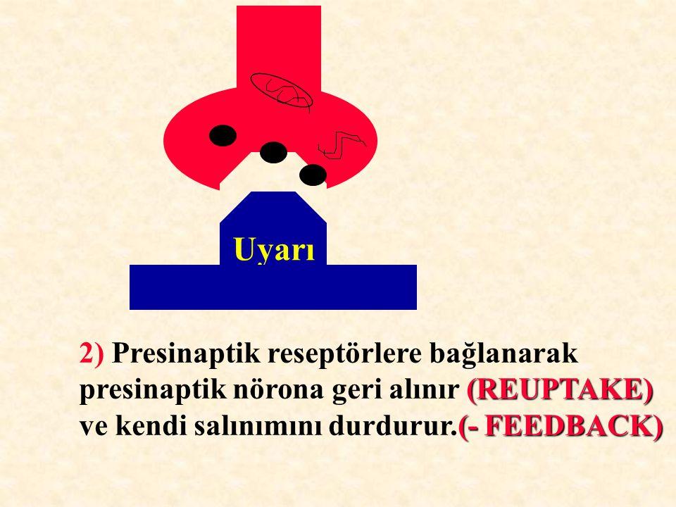 2) Presinaptik reseptörlere bağlanarak (REUPTAKE) presinaptik nörona geri alınır (REUPTAKE) (- FEEDBACK) ve kendi salınımını durdurur.(- FEEDBACK)