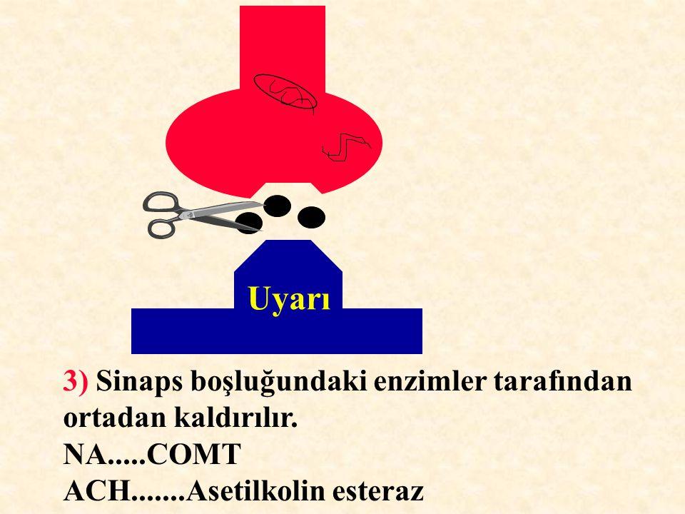 3) Sinaps boşluğundaki enzimler tarafından ortadan kaldırılır. NA.....COMT ACH.......Asetilkolin esteraz Uyarı