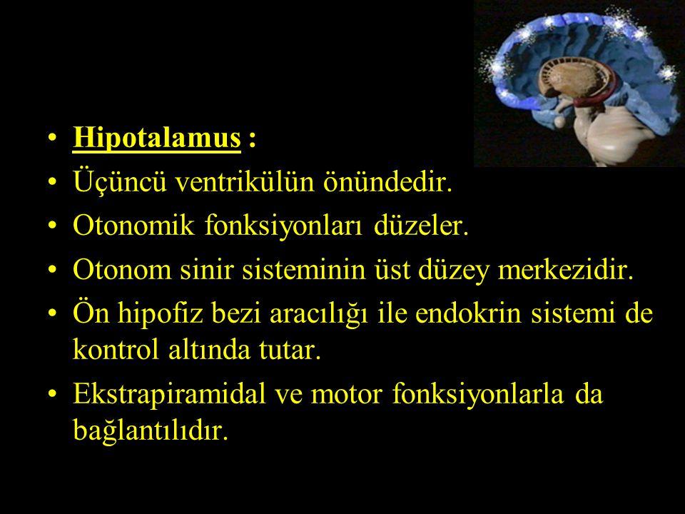 Hipotalamus : Üçüncü ventrikülün önündedir. Otonomik fonksiyonları düzeler. Otonom sinir sisteminin üst düzey merkezidir. Ön hipofiz bezi aracılığı il