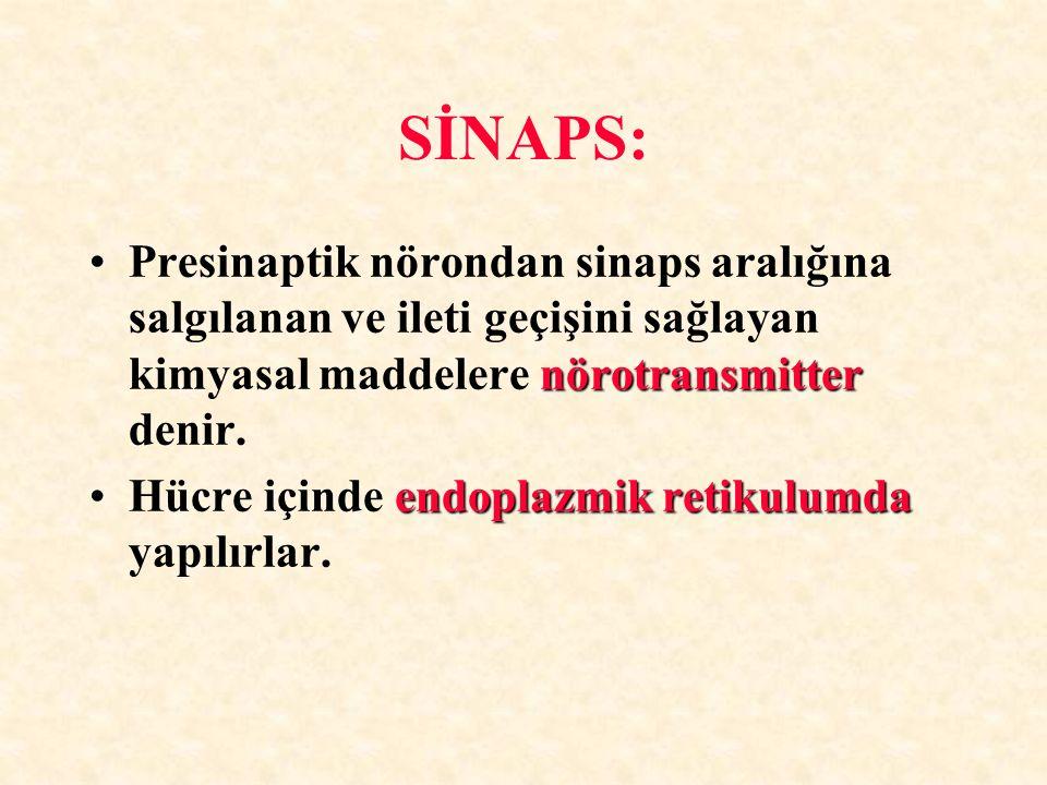 SİNAPS: nörotransmitterPresinaptik nörondan sinaps aralığına salgılanan ve ileti geçişini sağlayan kimyasal maddelere nörotransmitter denir. endoplazm