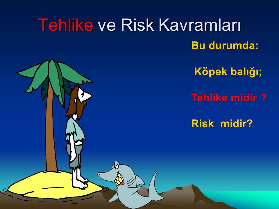 Tehlike ve Risk Kavramları Bu durumda: Köpek balığı; Tehlike midir ? Risk midir?