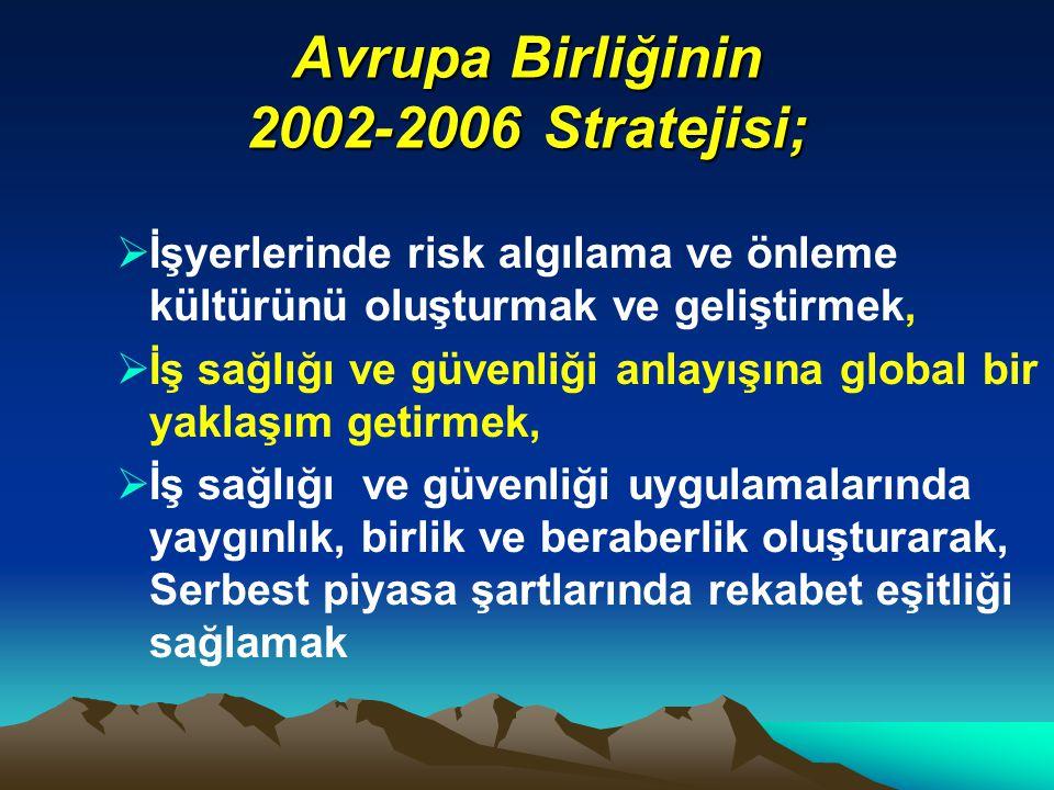 Avrupa Birliğinin 2002-2006 Stratejisi;  İşyerlerinde risk algılama ve önleme kültürünü oluşturmak ve geliştirmek,  İş sağlığı ve güvenliği anlayışı