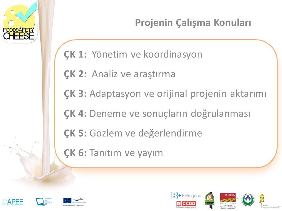 ÇK 1: Yönetim ve koordinasyon ÇK 2: Analiz ve araştırma ÇK 3: Adaptasyon ve orijinal projenin aktarımı ÇK 4: Deneme ve sonuçların doğrulanması ÇK 5: G
