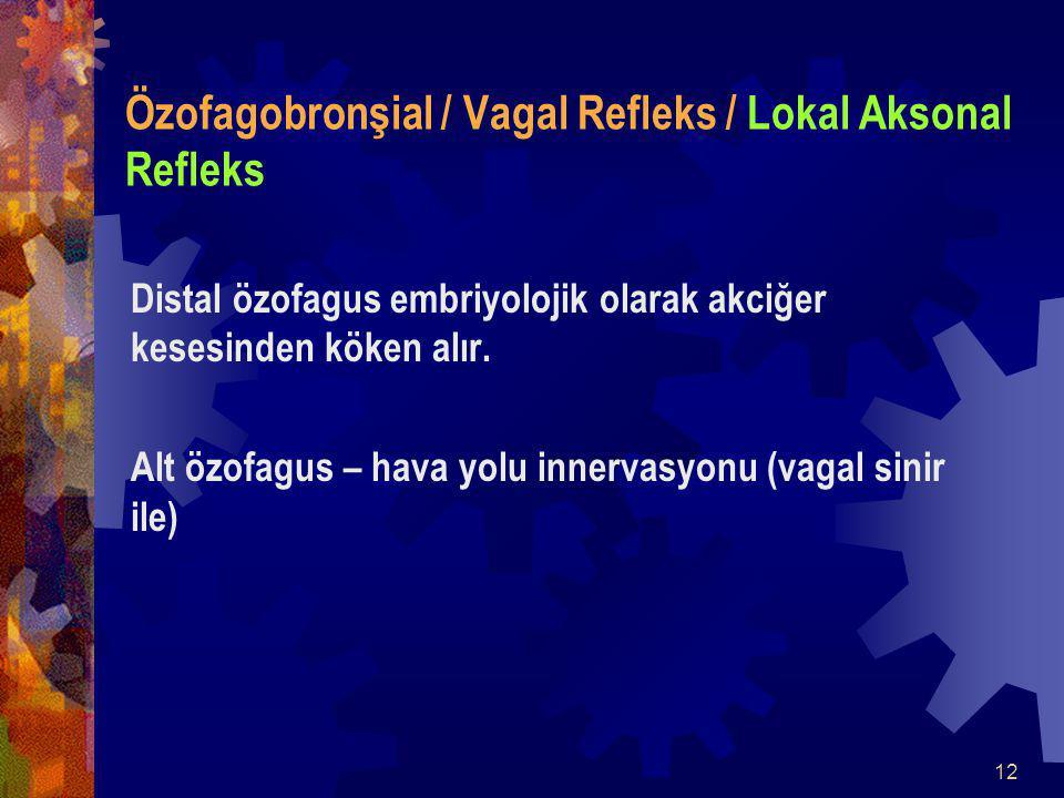 12 Özofagobronşial / Vagal Refleks / Lokal Aksonal Refleks Distal özofagus embriyolojik olarak akciğer kesesinden köken alır.
