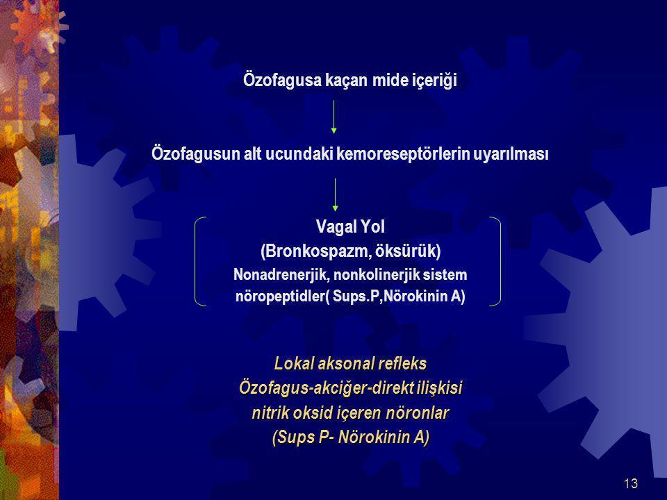 13 Özofagusa kaçan mide içeriği Özofagusun alt ucundaki kemoreseptörlerin uyarılması Vagal Yol (Bronkospazm, öksürük) Nonadrenerjik, nonkolinerjik sistem nöropeptidler( Sups.P,Nörokinin A) Lokal aksonal refleks Özofagus-akciğer-direkt ilişkisi nitrik oksid içeren nöronlar (Sups P- Nörokinin A)