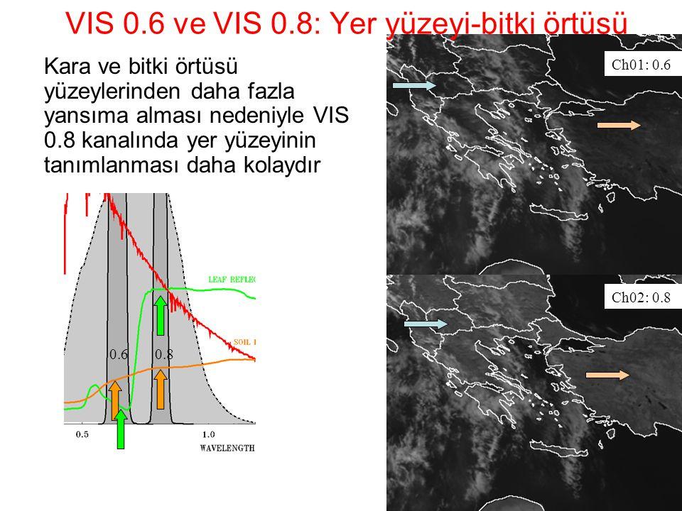 VIS 0.6 ve VIS 0.8: Yer yüzeyi-bitki örtüsü Kara ve bitki örtüsü yüzeylerinden daha fazla yansıma alması nedeniyle VIS 0.8 kanalında yer yüzeyinin tan