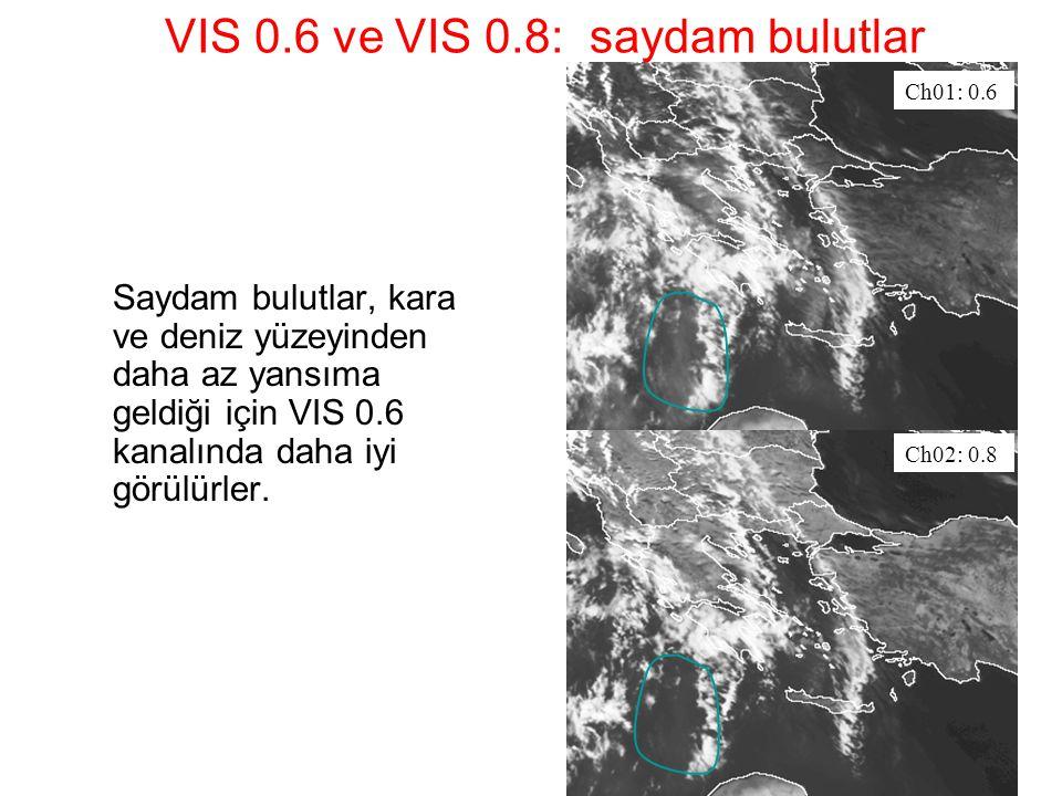 VIS 0.6 ve VIS 0.8: saydam bulutlar Saydam bulutlar, kara ve deniz yüzeyinden daha az yansıma geldiği için VIS 0.6 kanalında daha iyi görülürler. Ch01