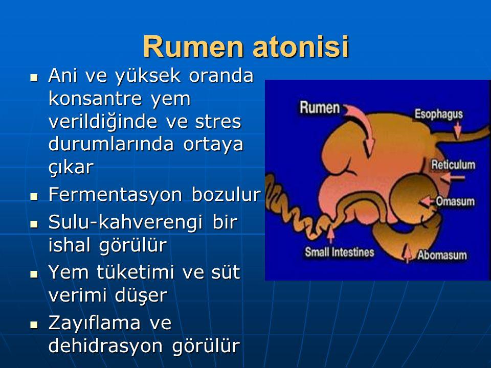 Rumen atonisi Ani ve yüksek oranda konsantre yem verildiğinde ve stres durumlarında ortaya çıkar Ani ve yüksek oranda konsantre yem verildiğinde ve st