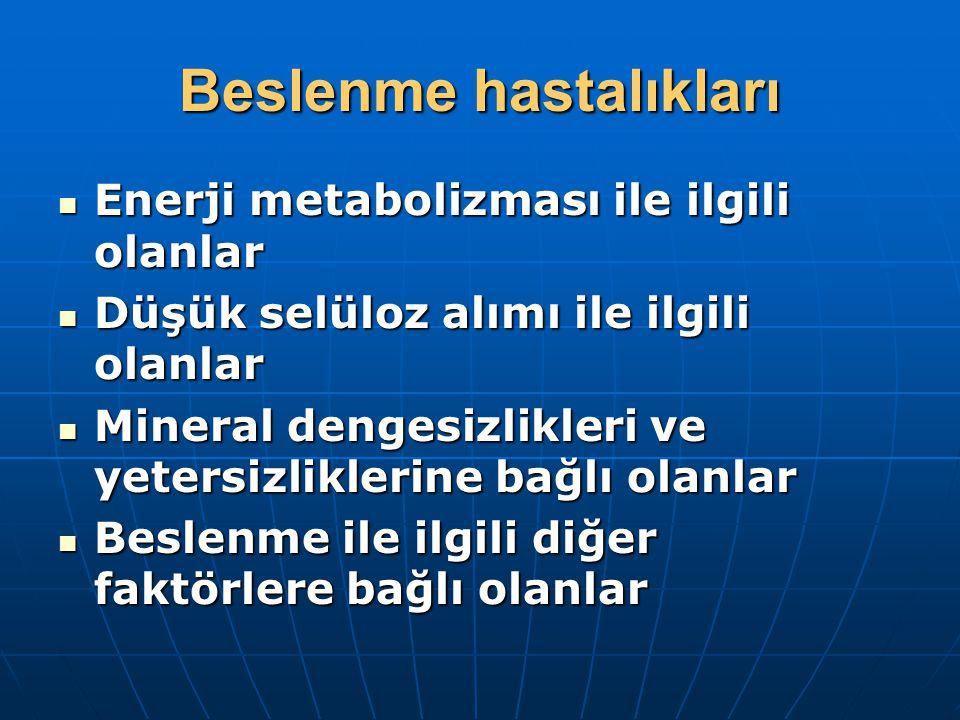 Beslenme hastalıkları Enerji metabolizması ile ilgili olanlar Enerji metabolizması ile ilgili olanlar Düşük selüloz alımı ile ilgili olanlar Düşük selüloz alımı ile ilgili olanlar Mineral dengesizlikleri ve yetersizliklerine bağlı olanlar Mineral dengesizlikleri ve yetersizliklerine bağlı olanlar Beslenme ile ilgili diğer faktörlere bağlı olanlar Beslenme ile ilgili diğer faktörlere bağlı olanlar