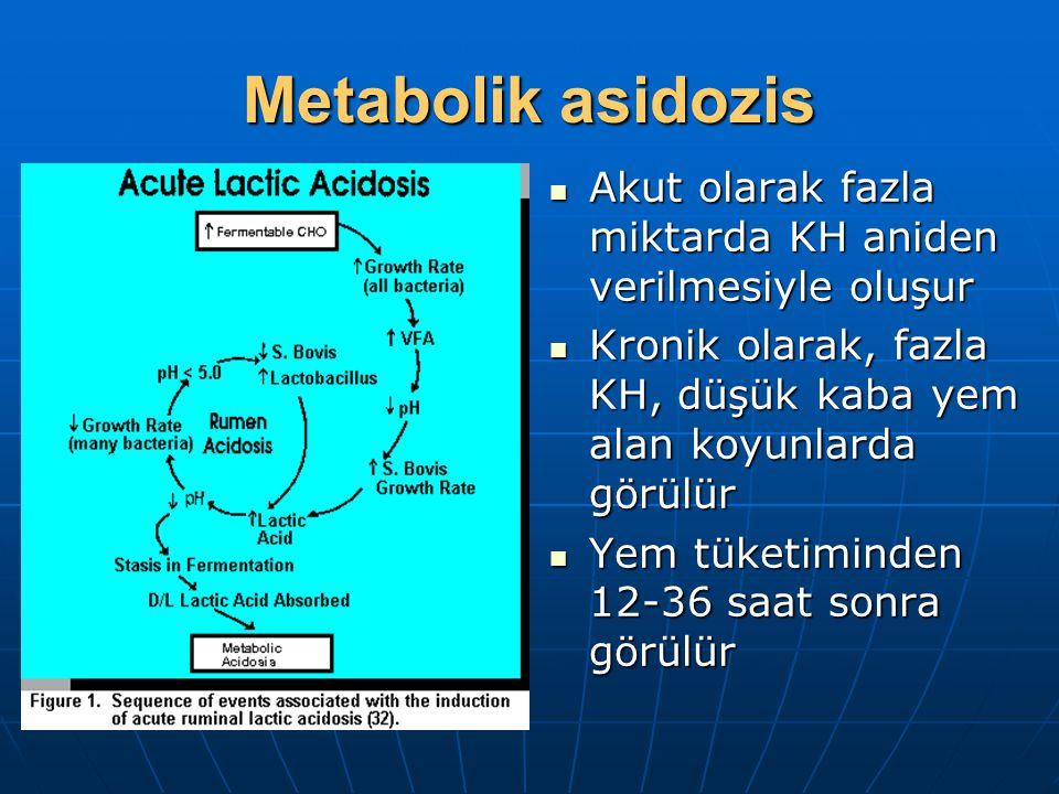 Metabolik asidozis Akut olarak fazla miktarda KH aniden verilmesiyle oluşur Akut olarak fazla miktarda KH aniden verilmesiyle oluşur Kronik olarak, fazla KH, düşük kaba yem alan koyunlarda görülür Kronik olarak, fazla KH, düşük kaba yem alan koyunlarda görülür Yem tüketiminden 12-36 saat sonra görülür Yem tüketiminden 12-36 saat sonra görülür