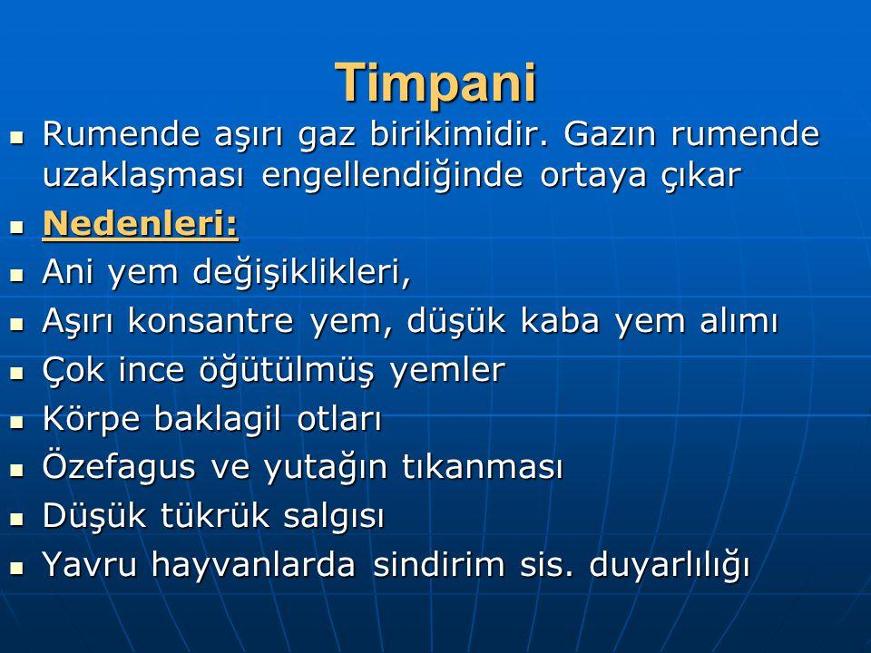 Timpani Rumende aşırı gaz birikimidir. Gazın rumende uzaklaşması engellendiğinde ortaya çıkar Rumende aşırı gaz birikimidir. Gazın rumende uzaklaşması