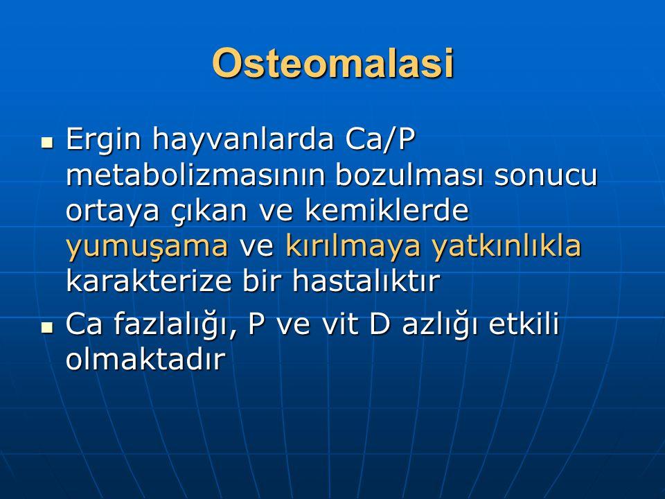 Osteomalasi Ergin hayvanlarda Ca/P metabolizmasının bozulması sonucu ortaya çıkan ve kemiklerde yumuşama ve kırılmaya yatkınlıkla karakterize bir hastalıktır Ergin hayvanlarda Ca/P metabolizmasının bozulması sonucu ortaya çıkan ve kemiklerde yumuşama ve kırılmaya yatkınlıkla karakterize bir hastalıktır Ca fazlalığı, P ve vit D azlığı etkili olmaktadır Ca fazlalığı, P ve vit D azlığı etkili olmaktadır