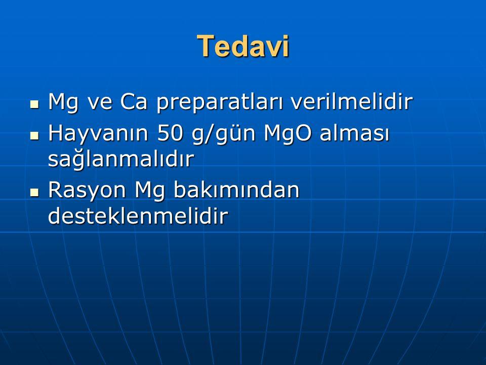 Tedavi Mg ve Ca preparatları verilmelidir Mg ve Ca preparatları verilmelidir Hayvanın 50 g/gün MgO alması sağlanmalıdır Hayvanın 50 g/gün MgO alması s