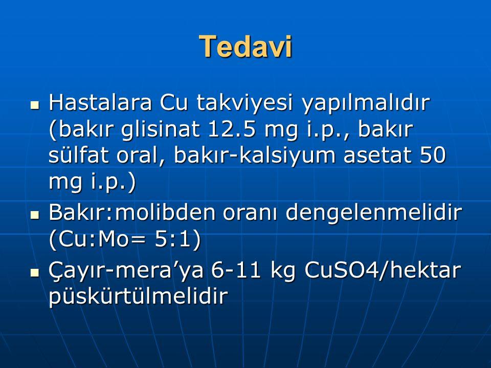 Tedavi Hastalara Cu takviyesi yapılmalıdır (bakır glisinat 12.5 mg i.p., bakır sülfat oral, bakır-kalsiyum asetat 50 mg i.p.) Hastalara Cu takviyesi yapılmalıdır (bakır glisinat 12.5 mg i.p., bakır sülfat oral, bakır-kalsiyum asetat 50 mg i.p.) Bakır:molibden oranı dengelenmelidir (Cu:Mo= 5:1) Bakır:molibden oranı dengelenmelidir (Cu:Mo= 5:1) Çayır-mera'ya 6-11 kg CuSO4/hektar püskürtülmelidir Çayır-mera'ya 6-11 kg CuSO4/hektar püskürtülmelidir