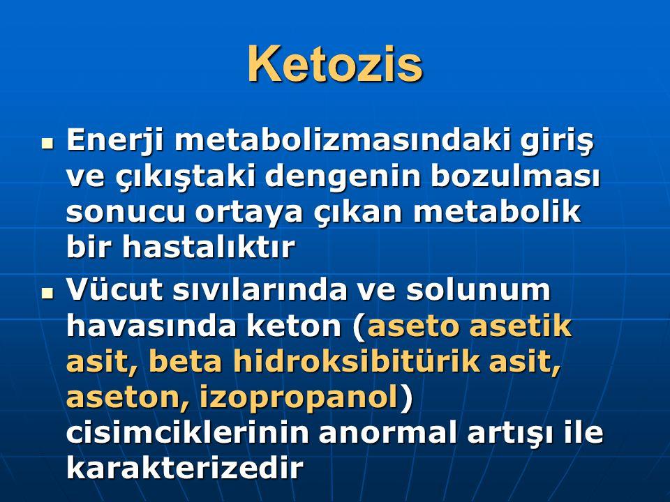 Ketozis Enerji metabolizmasındaki giriş ve çıkıştaki dengenin bozulması sonucu ortaya çıkan metabolik bir hastalıktır Enerji metabolizmasındaki giriş ve çıkıştaki dengenin bozulması sonucu ortaya çıkan metabolik bir hastalıktır Vücut sıvılarında ve solunum havasında keton (aseto asetik asit, beta hidroksibitürik asit, aseton, izopropanol) cisimciklerinin anormal artışı ile karakterizedir Vücut sıvılarında ve solunum havasında keton (aseto asetik asit, beta hidroksibitürik asit, aseton, izopropanol) cisimciklerinin anormal artışı ile karakterizedir
