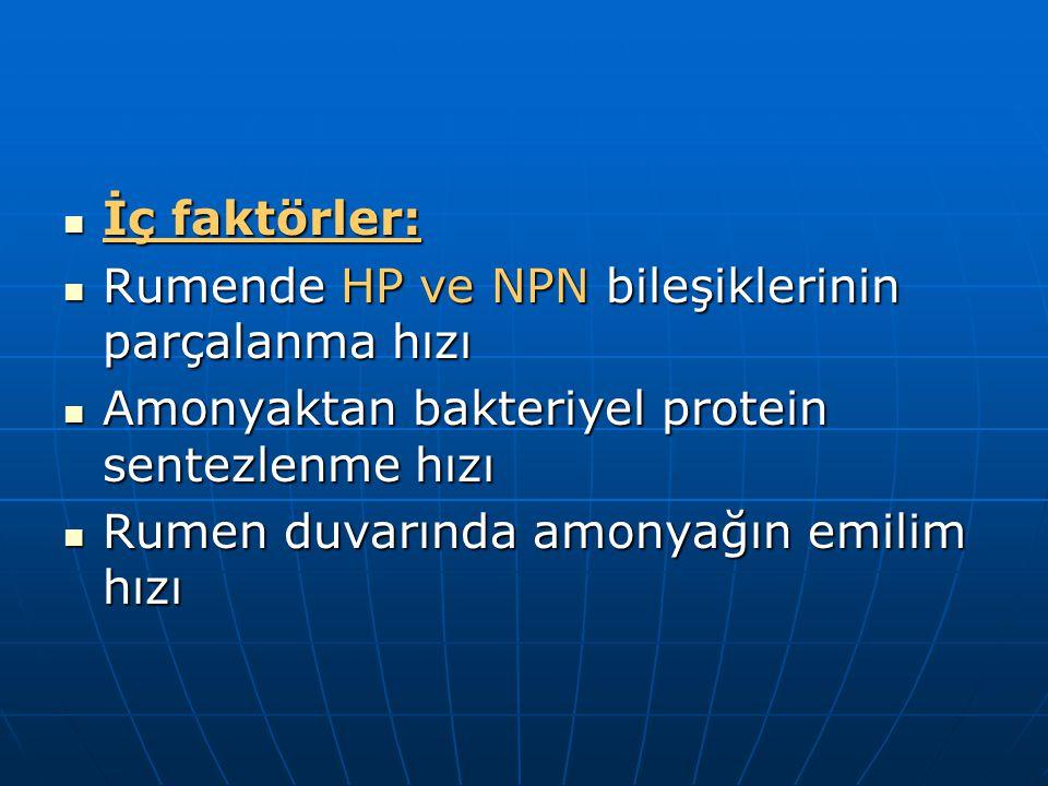 İç faktörler: İç faktörler: Rumende HP ve NPN bileşiklerinin parçalanma hızı Rumende HP ve NPN bileşiklerinin parçalanma hızı Amonyaktan bakteriyel protein sentezlenme hızı Amonyaktan bakteriyel protein sentezlenme hızı Rumen duvarında amonyağın emilim hızı Rumen duvarında amonyağın emilim hızı