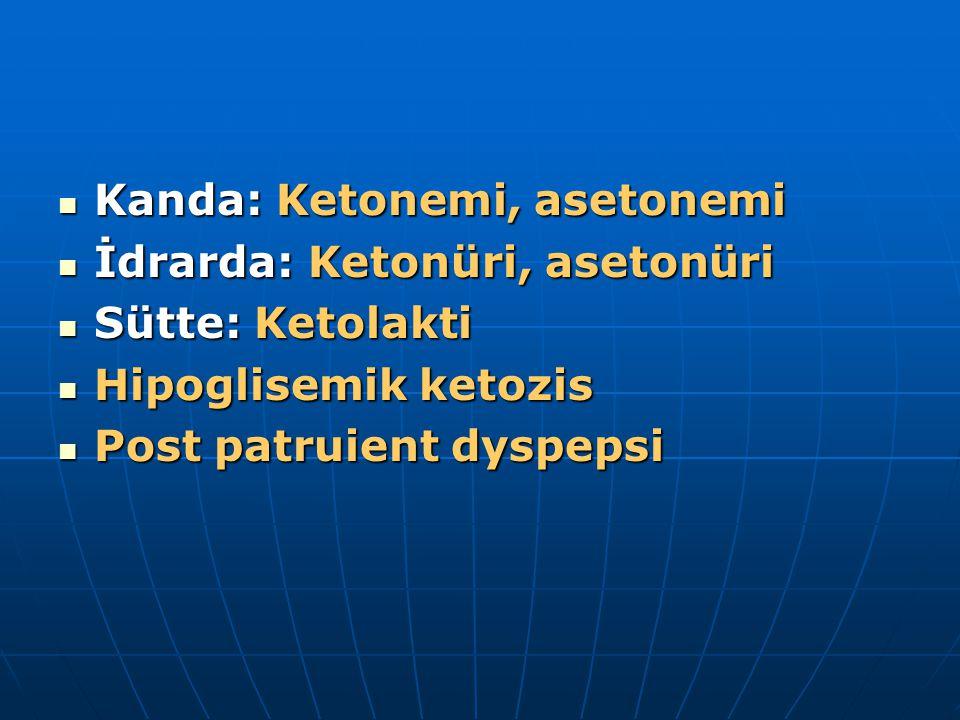 Kanda: Ketonemi, asetonemi Kanda: Ketonemi, asetonemi İdrarda: Ketonüri, asetonüri İdrarda: Ketonüri, asetonüri Sütte: Ketolakti Sütte: Ketolakti Hipoglisemik ketozis Hipoglisemik ketozis Post patruient dyspepsi Post patruient dyspepsi