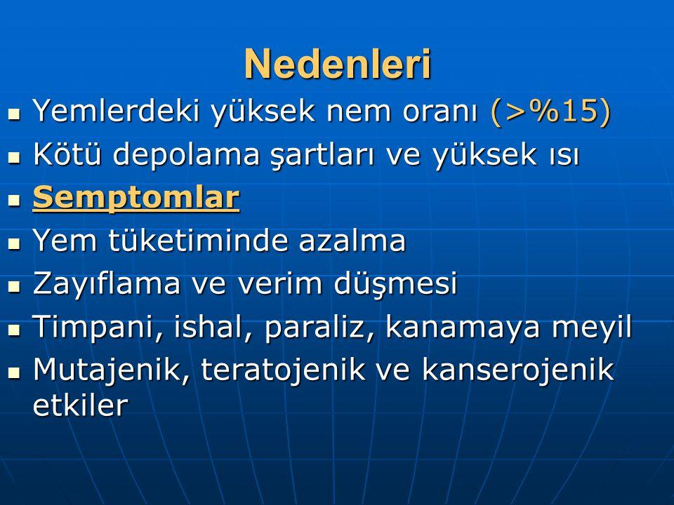 Nedenleri Yemlerdeki yüksek nem oranı (>%15) Yemlerdeki yüksek nem oranı (>%15) Kötü depolama şartları ve yüksek ısı Kötü depolama şartları ve yüksek