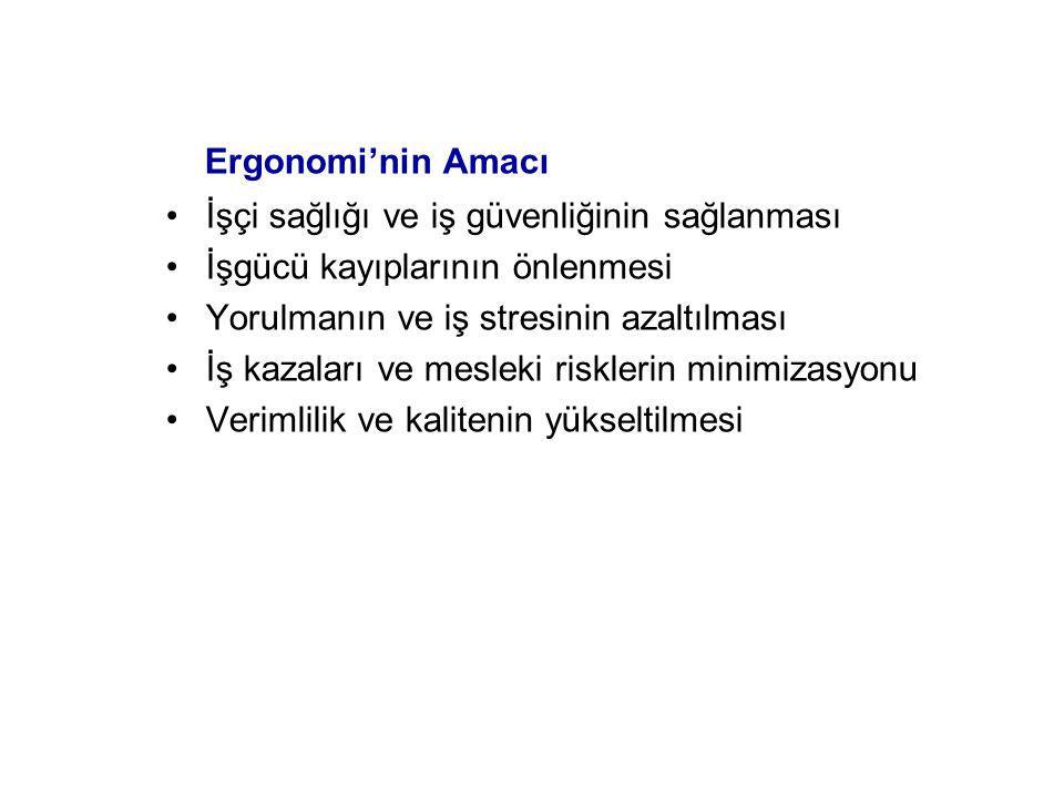 Antropometrik Ölçümler (Türk İnsanı)