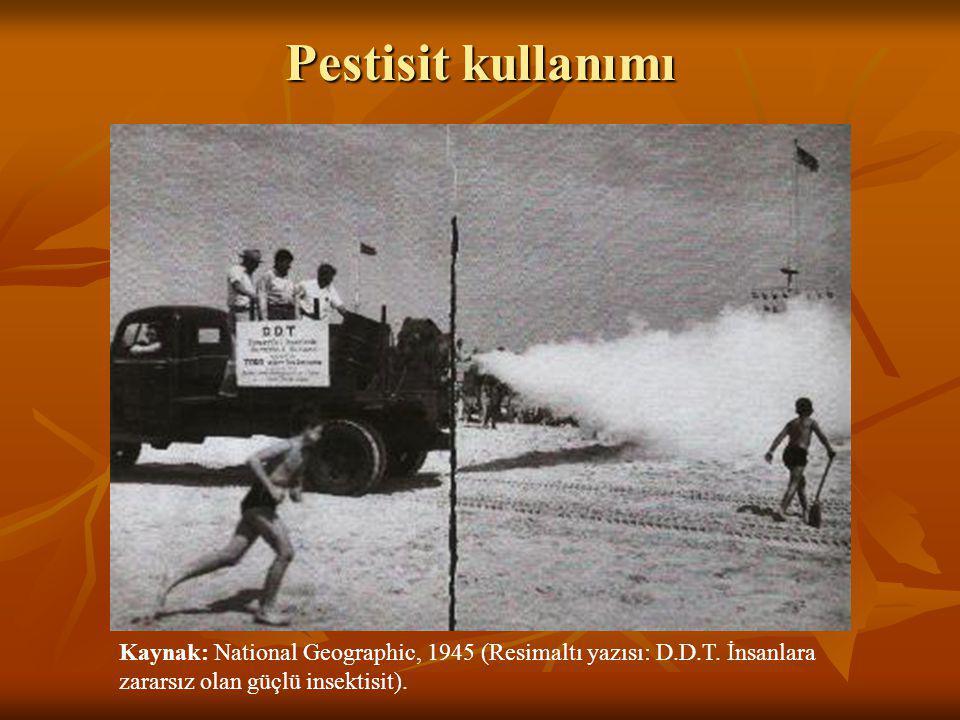 Pestisit kullanımı Kaynak: National Geographic, 1945 (Resimaltı yazısı: D.D.T. İnsanlara zararsız olan güçlü insektisit).