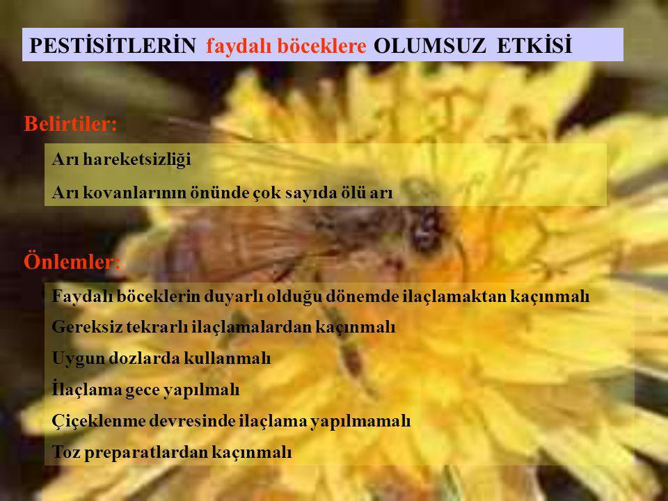 Arı hareketsizliği Arı kovanlarının önünde çok sayıda ölü arı PESTİSİTLERİN faydalı böceklere OLUMSUZ ETKİSİ Faydalı böceklerin duyarlı olduğu dönemde