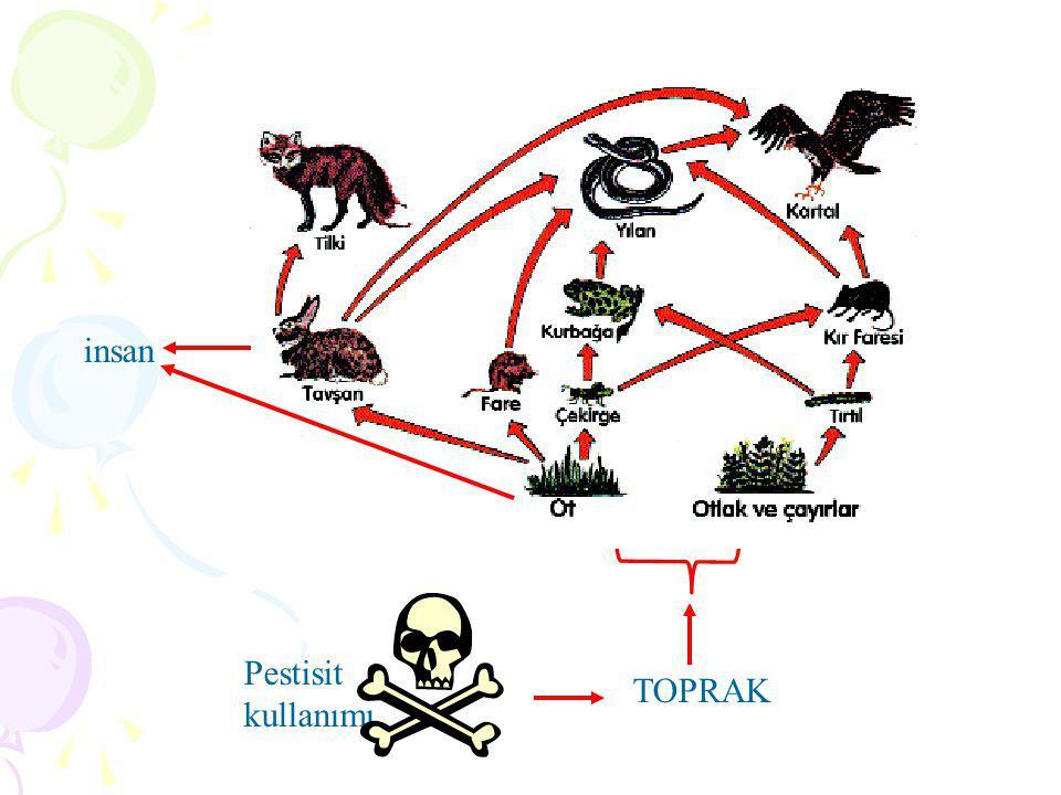 bitki insan Pestisit kullanımı TOPRAK