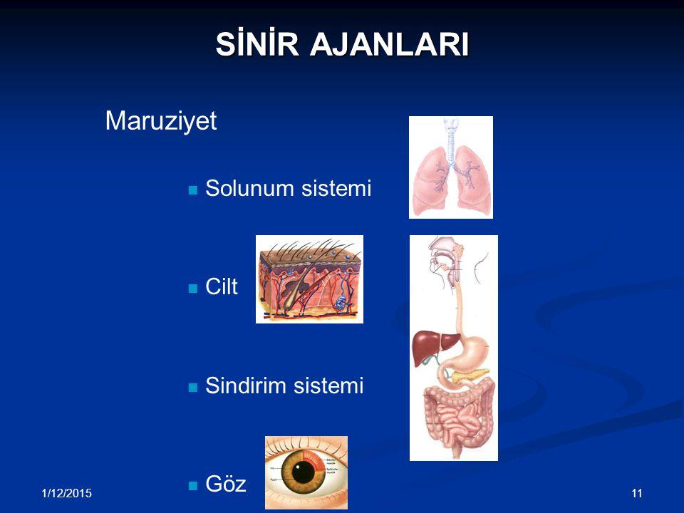 1/12/2015 11 SİNİR AJANLARI Solunum sistemi Cilt Sindirim sistemi Göz Maruziyet