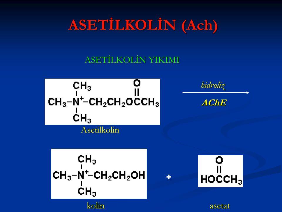 ASETİLKOLİN YIKIMI Asetilkolin kolin asetat hidroliz + AChE ASETİLKOLİN (Ach)